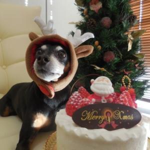 ♡Happy Christmas♡