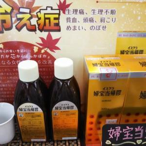 富士に雪、明日は霜降、婦宝当帰膠お湯割りがうれしい季節になりました