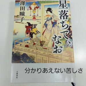 澤田瞳子著「星落ちて、なお」分かり合えない苦しさ
