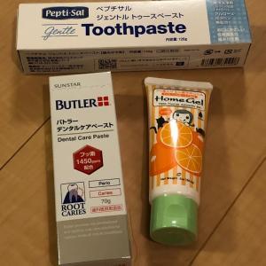 歯磨き粉とフッ素ジェル