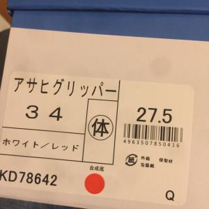 ((((;゚Д゚)))))))  27.5センチ!?