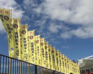 2月阪神タイガースキャンプ宿情報