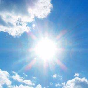 太陽を見てみました