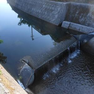 ゴム製のダムは優れもの