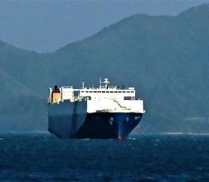 安浦・川尻沖に停泊中、自動車運搬船「フェニックス」