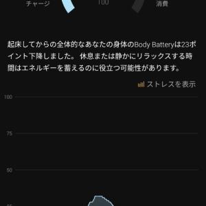 1月22日の記録~ヘトヘト~