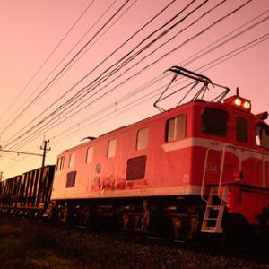 ピンク色の世界
