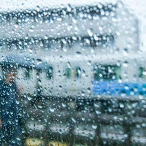 長かった梅雨