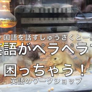 4ヶ国語を話す「プロの翻訳家・しゅうさく」と一緒に Let's speak English!