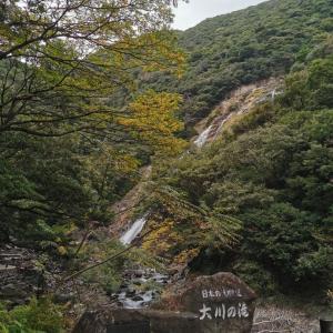 屋久島のオススメの滝