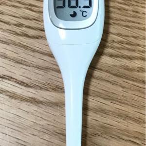 昼の体温は、36.5℃でした。 2020.07.26