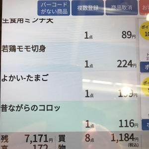 篠崎トライアルで買い物しました。  2020.09.24