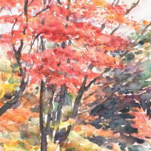 色づく木立