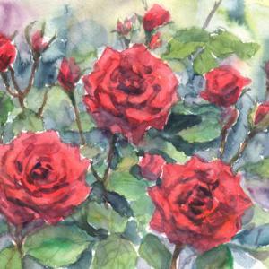 深紅の薔薇