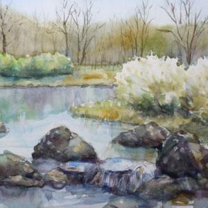 暖春の水辺