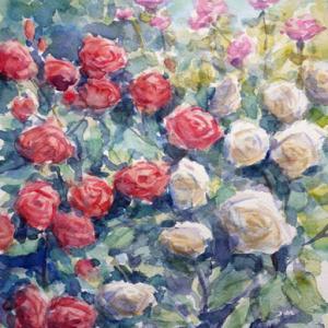 彩るバラ園