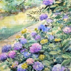 川べりの紫陽花