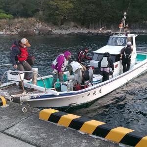 初渡礁「大岩(おおいわ)」 東伊豆・菖蒲沢