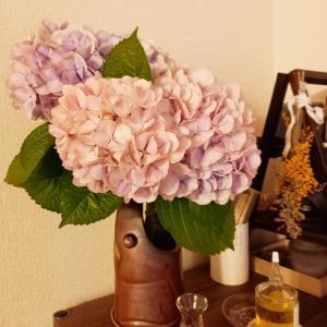 紫陽花…☆