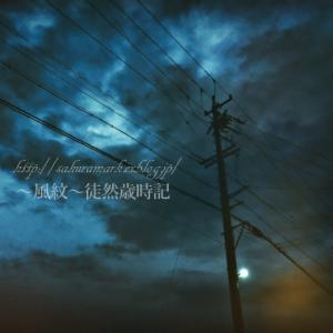 孤独な灯火。