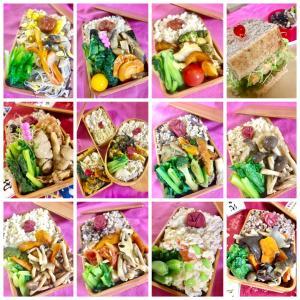 Rinarobi Macrobiotic Lunch Box♡