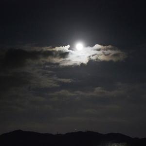 中秋の名月の前夜に