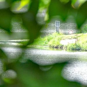 水辺の公園散歩☆スパコン
