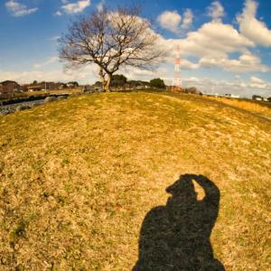 午後の公園☆長い影