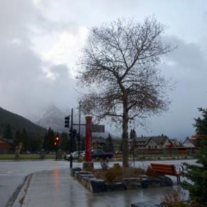 『朝9時ごろに小雨』『朝のこの時間では人はほとんど歩いてません』『今日も全般に曇りです』Banff,Canada