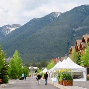 『バンフアベニュー通りに「ひまわりの花」がいっぱい』『青空があったら雪山とひまわりで「青・白・黄」のコントラスト写真が撮れる;晴れた日を待とう』Banff,Canada