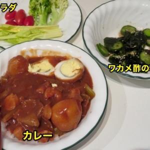 『最近食った飯ネタ』『日本式のカレー(インスタント・カレー・ルーより)』『箱の半分の量で3日分の晩飯は持つ』『4日目の晩飯はカレーうどん』『ポテトサラダ』『野菜生サラダ』Banff,Canada