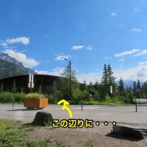 『久々のバーミリオン・レイク(Vermilion Lake)での動物・鳥・花々①』『黒熊(Black Bear)に遭遇;いきなり目の前の道路を横切って行った〜😧』『鹿くんがベンチのすぐ後ろを通り過ぎる』Banff,Canada