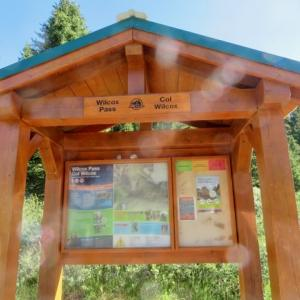 『今日27日はまた久々のハイキング』『快晴の中;Wilcox Pass(ウィルコックス・パス)にハイキング』『今日は遅くなったので明日詳しく載せます』Banff,Canada