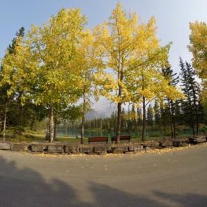 『今日は朝から小雨&その後曇り』『雨で山火事の煙解消!と思いきや再びの空気汚染警告が出た』『写真は一昨日9月17日のバンフ町中の黄葉』Banff,Canada