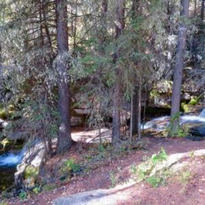 『Troll Falls(トロール滝)@カナナスキス②』『小さな滝がいっぱいある』『その中でも一番大きな滝は内側(中側)を歩ける』『帰り道の黄葉森林の眺めが素敵』Banff,Canada