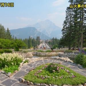 『山火事煙の中のCascade of Time Garden;通称キャスケードガーデン』『山々が煙で霞んだまま』『花園では大きな花々も色鮮やかな花々も咲いている』『何度来ても違う景色を見せてくれる』*「記事書き」はBanff,Canada