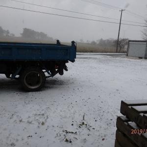 とうとう雪