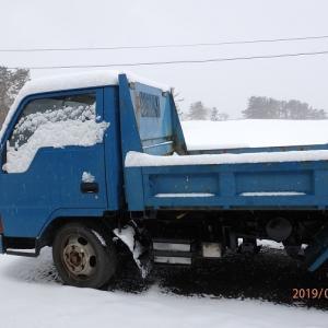 雪なのでカーリング観戦