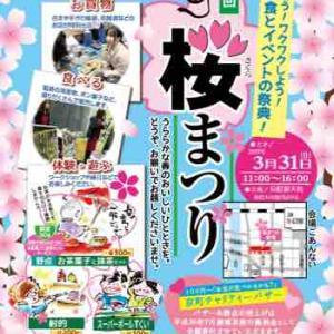 3月30日京町桜まつり