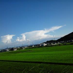 今日の空は青すぎるぜ!