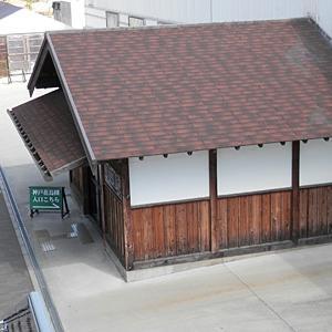 神戸花鳥園へ【その2】入り口からキョロちゃんまで