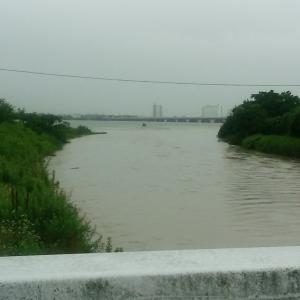 琵琶湖真野川河口!!