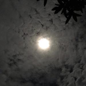 フルムーンと雲の流れ