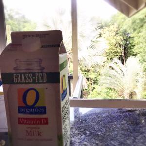 Grass fed milk
