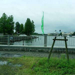 朝の琵琶湖南湖!!