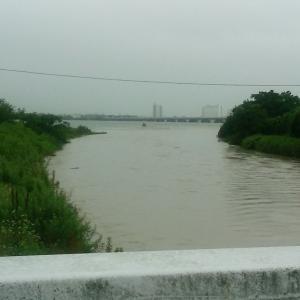 朝の琵琶湖真野川河口!!
