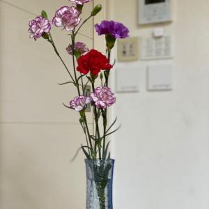 花 / the flowers