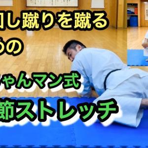 上段回し蹴りを簡単に蹴るための股関節ストレッチ法 股関節の柔軟 股関節を柔らかくする
