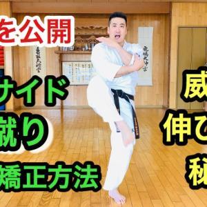 【秘密を公開】 インサイド前蹴りの軌道矯正方法