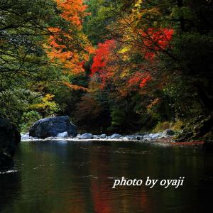 弾丸撮影ツアー 渓流の美